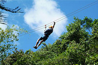 Rainforest Canopy Adventure from Vieux Fort or North Island, St Lucia Photos
