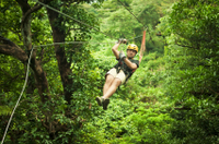 Roatan Shore Excursion: Extreme Zipline Canopy Adventure Photos