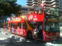 Santa Cruz de Tenerife Hop-On Hop-Off Tour Photos