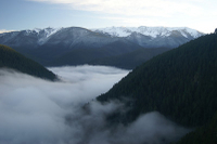 Seattle Shore Excursion: Small-Group Olympic National Park Tour Photos