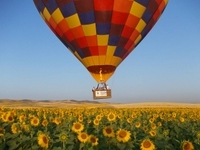 Seville Hot-Air Balloon Ride Photos