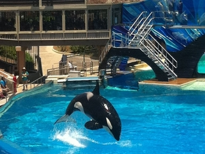 SeaWorld® San Diego Photos