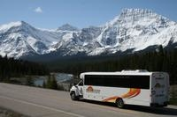 Shared Transfer: Jasper to Edmonton Airport or Edmonton Mall Photos