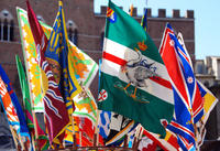 Siena's Palio Horse Race from Florence Including City Tour and Dinner Photos