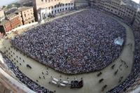 Siena's Palio Horse Race Including City Tour Photos