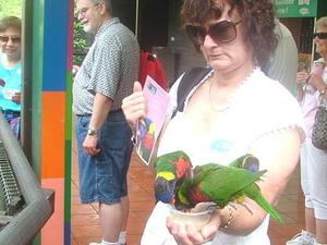 Singapore Jurong Bird Park Tour Photos