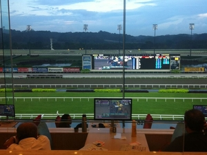 Singapore Turf Club: Horse Racing with VIP Lounge Access Photos