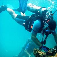 Sir Francis Drake Island Full-Day Scuba Diving Adventure Photos
