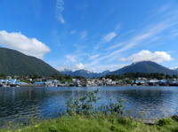 Sitka Shore Excursion: Alaskan Wildlife by Land and Sea Photos