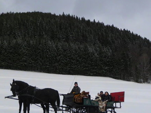 Private Horse Drawn Sleigh Ride from Salzburg Photos