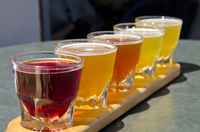 Small-Group Craft Brews and Bike Tour in San Francisco  Photos
