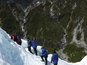 Small-Group Franz Josef Glacier Walk Photos