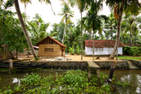 Small-Group Kerala Backwaters Tour from Kochi Including Ayurvedic Massage  Photos