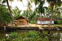 Small-Group Kerala Backwaters Tour from Kochi Including Ayurvedic Massage  Photos