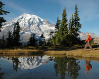 Small-Group Mt Rainier Experience Including Hiking or Snowshoeing and Lunch or Dinner Photos