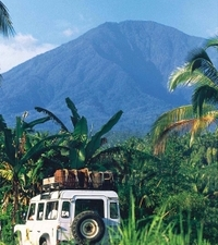 Small-Group Tour: Bali Rainforest by 4WD Photos
