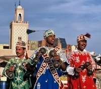 Souks and Medinas of Marrakech Tour Photos