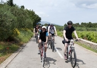 Split Bike Tour: City Highlights by Standard or Electric Bike Photos