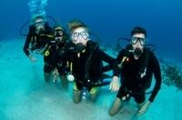 St Maarten Scuba Diving for Certified Divers Photos