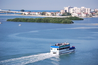 Sunset Party Cruise from Clearwater Photos