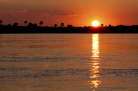 Sunset Zambezi River Cruise with Transport from Victoria Falls Photos