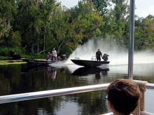 Small-Group Swamp Boat Tour of Cajun Country from New Orleans Photos