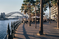 Sydney Shore Excursion: Sydney Walking Tour Photos