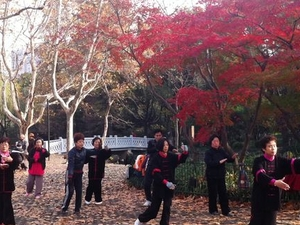 Private Tour: Yangshuo Bike Adventure including Tai Chi Lesson and Chinese Massage Photos