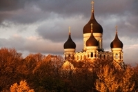 Tallinn Art Tour: Kadriorg Park and Kumu Photos