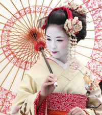 The Art of the Geisha: Private Dinner in Kyoto Photos