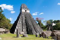 Tikal Day Trip from San Ignacio Photos