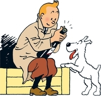 Tintin Comics Tour to Hergé Museum from Brussels Photos