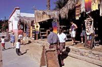 Todos Santos Tour from Los Cabos Photos