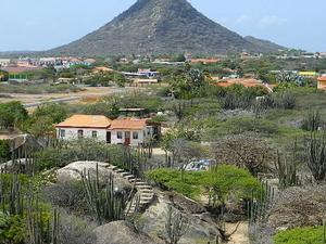 Island Tour of Aruba Photos