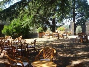 Livorno Shore Excursion: Chianti and Tuscany Countryside Private Wine Tour Photos