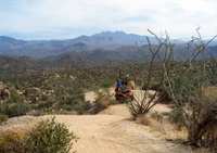 U-Drive ATV Tour in the Sonoran Desert Photos