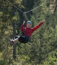 Victoria Shore Excursion: Small-Group Zipline Adventure Photos