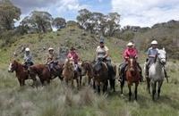 Vida Aventura Park in Guanacaste: Zipline Tour, Horseback Ride and Hot Springs Photos