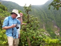 Volcano Crater Hiking Tour in St Kitts Photos