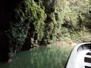 2-Day Waitomo Caves, Hobbiton Movie Set and Rotorua Tour from Auckland Photos