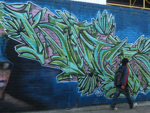 Small-Group Buenos Aires Graffiti Art Tour Photos