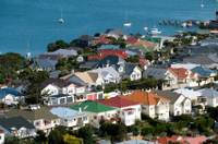 Wellington City Sightseeing Small-Group Tour Photos