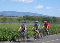 Wine Country Adventure: Bike and Kayak Wine Tour Photos