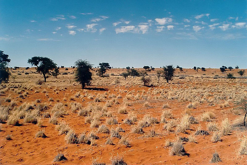 Kalahari Desert, Botswana Tourist Information