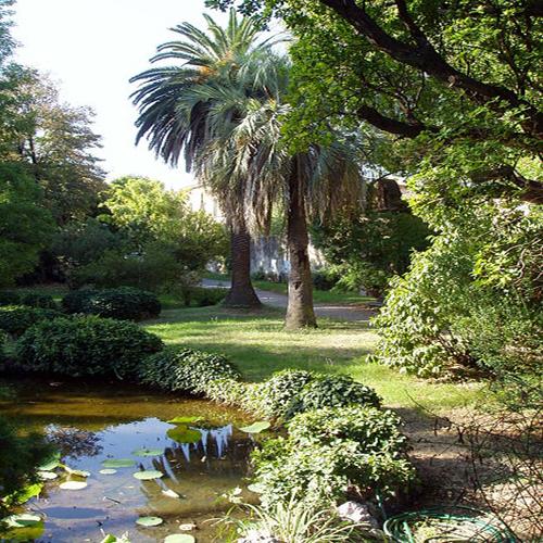 El jard n bot nico de pisa pisa italia informaci n tur stica for Informacion sobre el jardin botanico