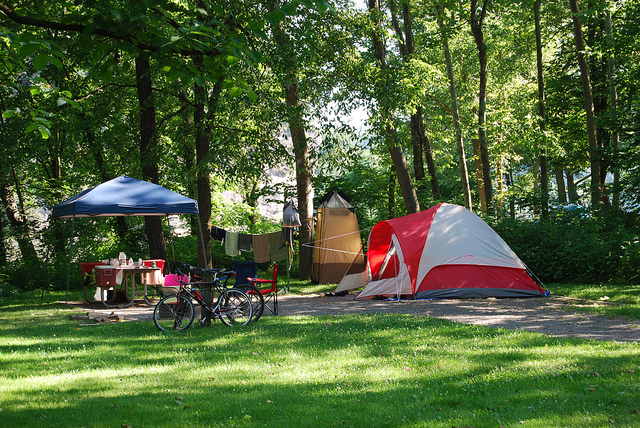 Timber Camp Group Campsite Globe United States Photos